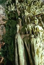 Formy naciekowe w jaskini Melidoni