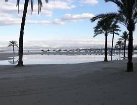 Plaża po burzy